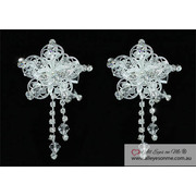 Set of 2 Crystal Flower Hair Clips T1440